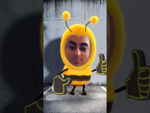 Honey Bee Rap Song Snapchat Filter W MrAlanC