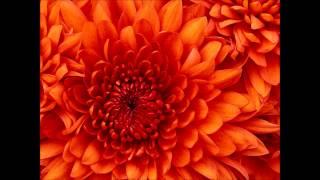 Blumenwalzer