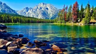 видео Живая красота земли