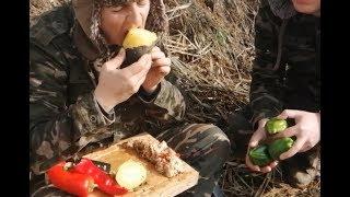 Stuffed Peppers Vegetarian - Stuffed Peppers With Ground Turkey- Turkey Street Food