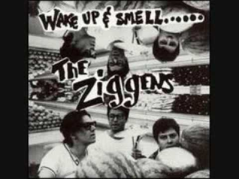 The Ziggens - Really Bad Sunburn