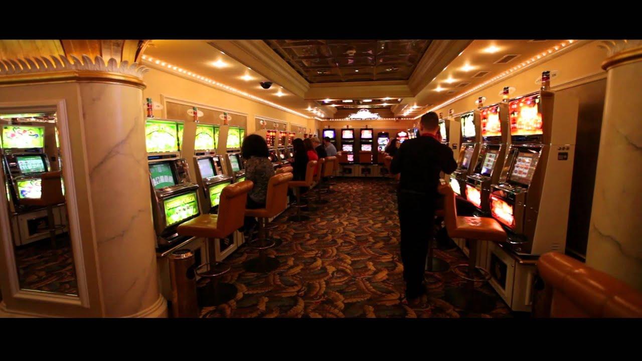 Casino schaffhausen diamond casino cruise