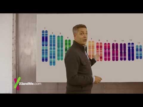 23andMe: Reinventing Ancestry