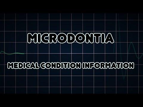 Header of microdontia