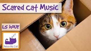 Soothing Music for Scared Cats  Music to Help Your Cat Relax! Soothing Music for Cats