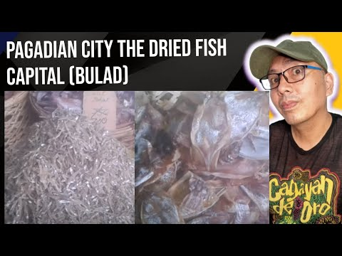 Biggest Dried Fish Market Of The Philippines That You Need To Know