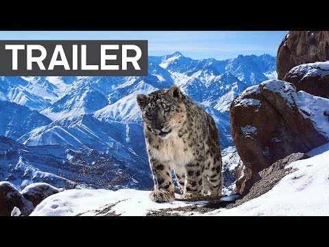 Planet Earth II: Official Extended Trailer | BBC Earth
