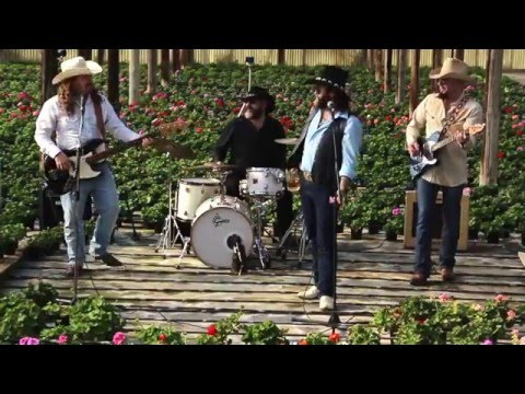 The Barroom Buddies Band - Pick me up on your way down
