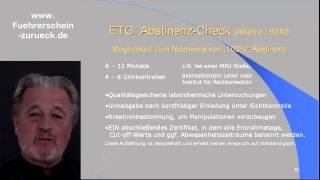 MPU-Seminar Ausschnitt 5 : Blut- & Leberwerte und Abstinenznachweise