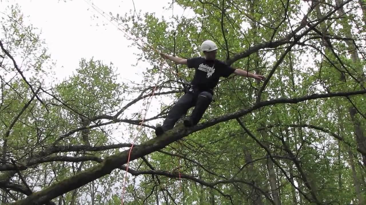 Branchwalking Basic Tree Climbing Techniques Youtube
