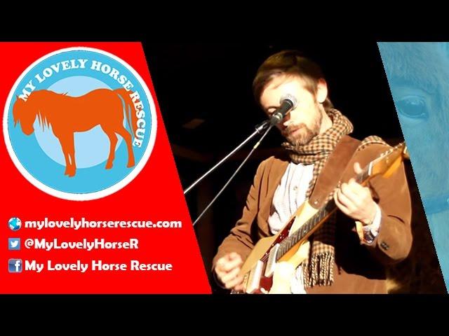 neil-hannon-my-lovely-horse-my-lovely-horse-rescue