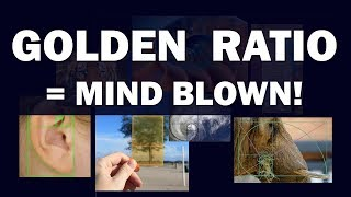 Golden Ratio = Mind Blown!