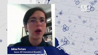 Adina Portaru - Ce ar putea face Romania cu privire la Conventia de la Istanbul?