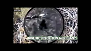 Bigfoot Spotted On Eagle Cam In Michigan - Fox News