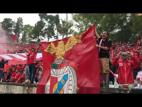 Momento em que o adepto que ficou ferido no Académica-Benfica é empurrado da bancada e cai na pista. from YouTube · Duration:  20 seconds