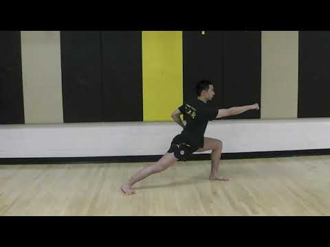 Wushu Sparring (Sanshou)