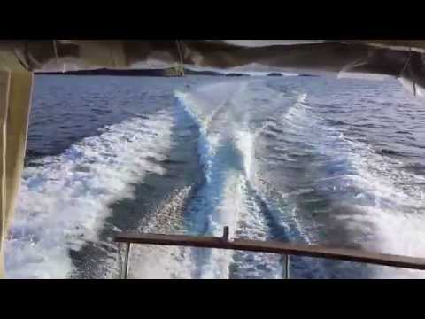 Bayliner 2455 cruising speed and wot