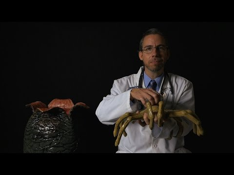 The Xenomorph Experiment with Professor Clemmons [ ASMR ]