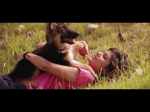 Gagan Walia- Kya Tuu Jaane(Teaser)
