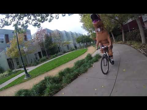 dinosaur-riding-a-bicycle
