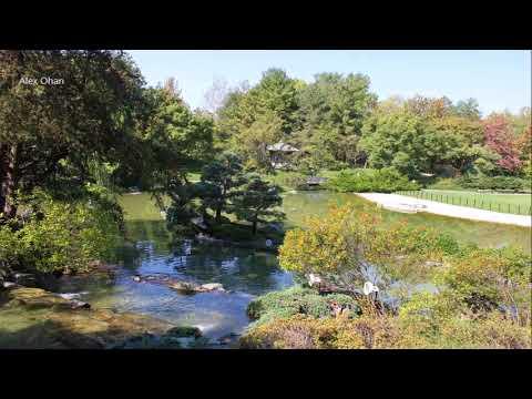 Japanese Garden; Montreal Botanical Gardens, Montreal, Quebec, Canada.