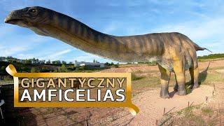 Amficelias - największe zwierzę lądowe jakie kiedykolwiek chodziło po Ziemi?