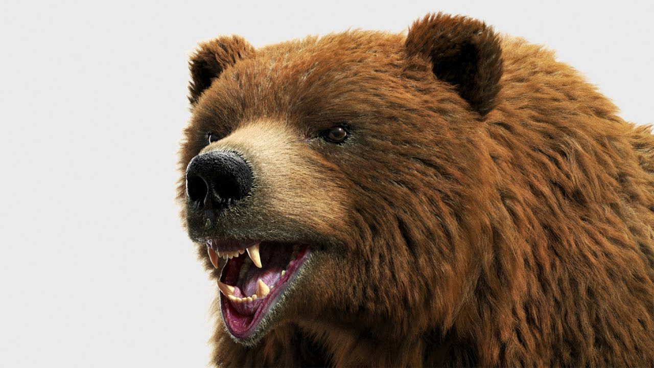 Brown Bear Modeling and Rendering using Zbrush 2019/3ds Max/V-Ray/Ornatrix  - Timelapse