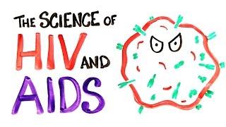 Как работает ВИЧ/СПИД