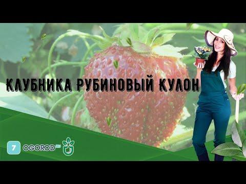 Клубника Рубиновый Кулон