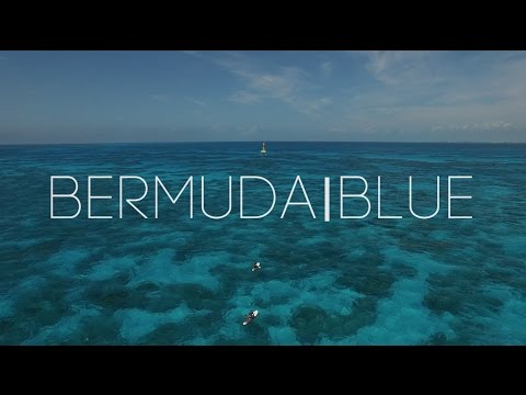 BERMUDA BLUE - Taylor Rankin & his violin Leroy - Atlantic Ocean Jam