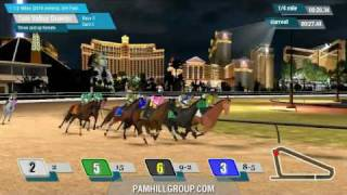 Virtual Horse Racing project