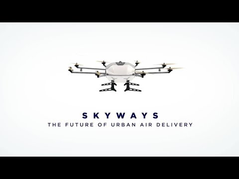 The Skyways project