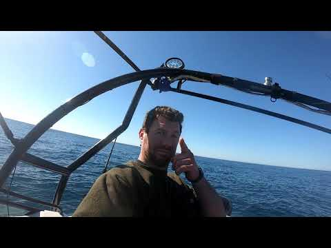 Fishing Deep South East Coast New Zealand (Slaying) + COOK