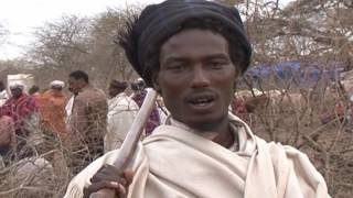 Gada system, an indigenous democratic socio-political system of the Oromo