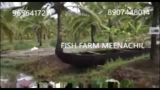 Fish Farm Kerala MEENACHIL