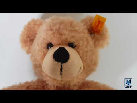 Wold's best quality bear - stuffed animal from Amazon