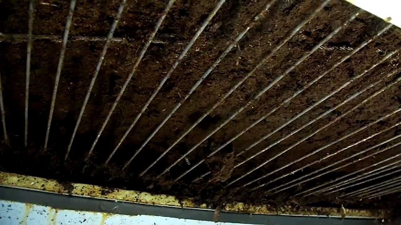 "worm composting...Flowthru ""Arching"" - YouTube"
