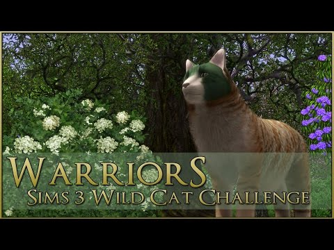 Wild Adventures & Thoughtful Oaks 🌿 Warrior Cats Sims 3 Legacy - Episode #58