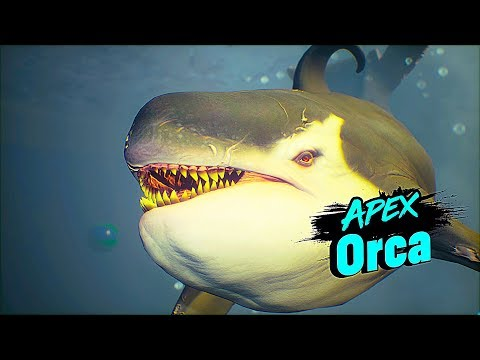 MANEATER Apex Orca Boss Fight Gameplay 4K 60FPS