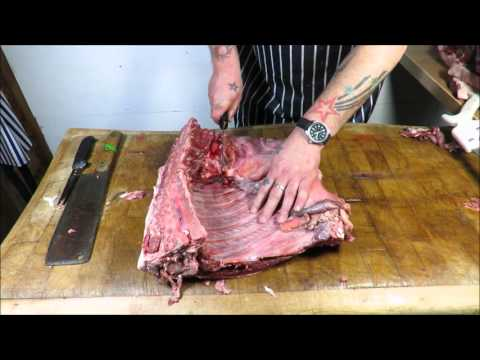 How To Butcher A Wild Boar/Hog. TheScottReaProject.