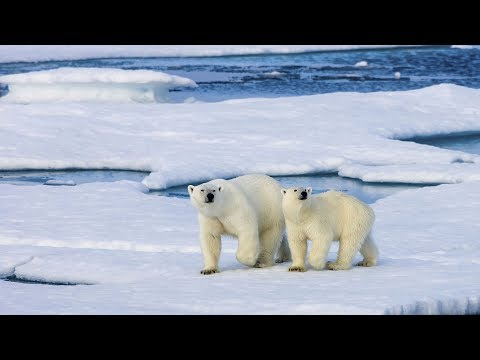 China's Arctic policy: Misconceptions on China's intentions?