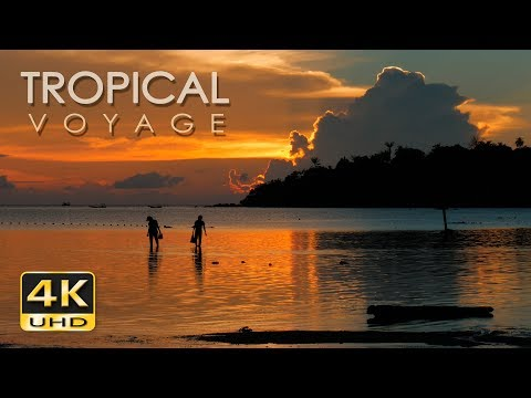 4K Tropical Voyage - Thailand - Ultra HD Nature Video & Relaxing Music - UHD - 2160p
