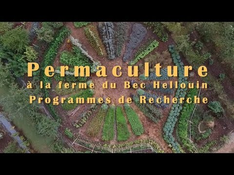 Recherche à la ferme du Bec Hellouin - microferme et forêt jardin