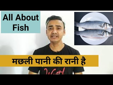 What Is Sea Water 🎏 Fish | What Is Fresh Water Fish ? | Continental Cuisine Fish Dishes | Flat Fish