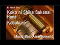 Download Koko ni Shika Sakanai Hana/Kobukuro [Music Box] MP3 song and Music Video