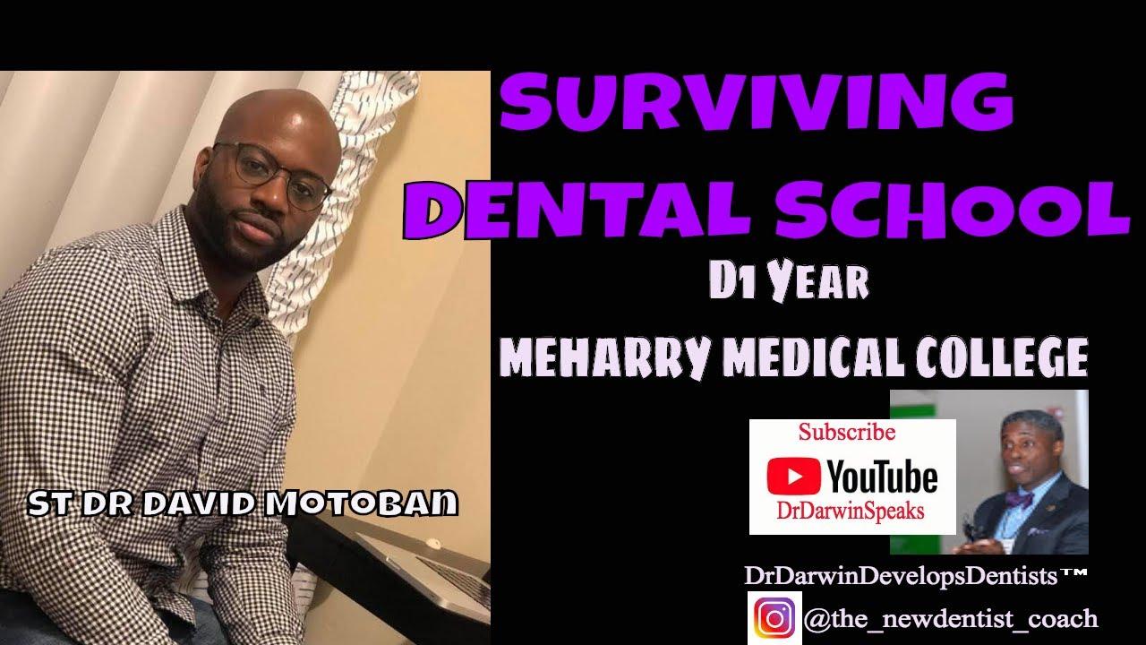 Surviving D1 Dental School Year at Meharry   New Dentist Coach Dr Darwin  Hayes DDS
