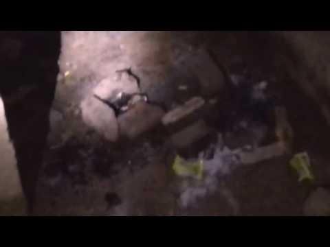 The Begunkodar Ghost Station Live Online⁄⁄⁄
