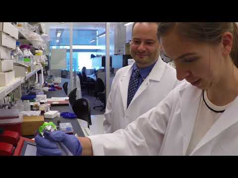 Advances in Alzheimer's disease Research