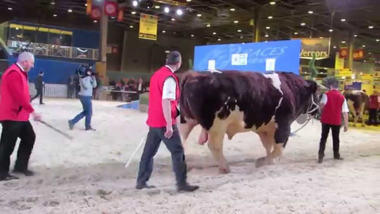 Salon de l 39 agriculture 2015 youtube for Salon agriculture paris 2015