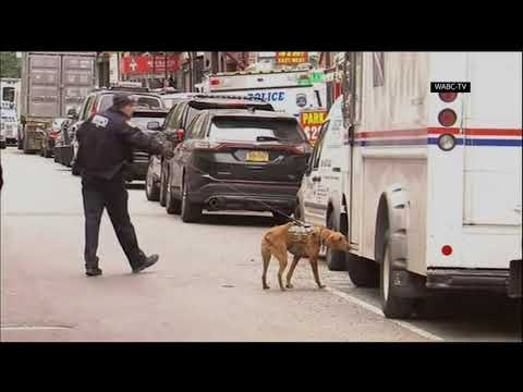 Another suspicious package at NYC postal facility